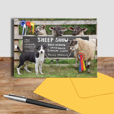 Sheep Show greetings card - Young Sheep Handler - Kitchy & Co