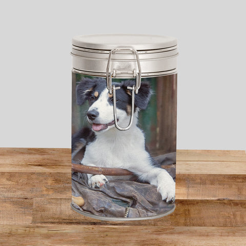 Sheepdog Pup Storage Tin - Shepherds new Helper - Kitchy & Co