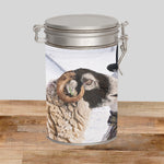 Swaledale Sheep Storage Tin - Extra Treats - Kitchy & Co