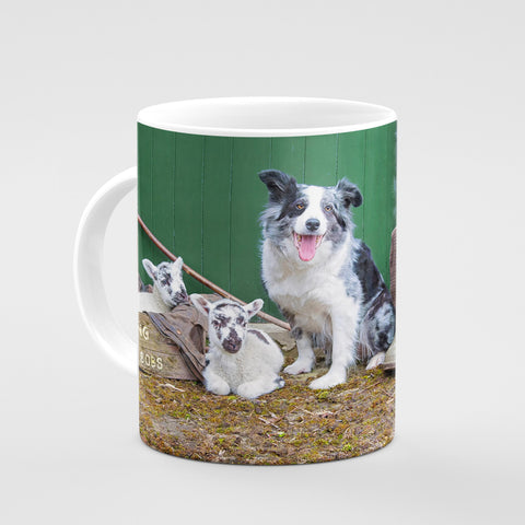 Blue Merle Collie Mug - Farming Bits and Bobs - Kitchy & Co