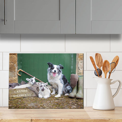 Blue Merle Border collie and lambs glass chopping board - Bits & Bobs - Kitchy & Co