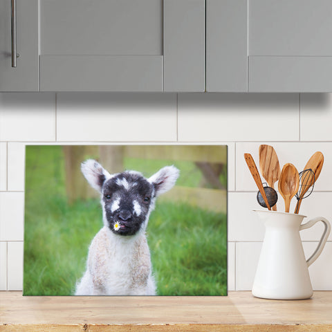 Cute lamb glass chopping board - Well I guess we'll call her Daisy - Kitchy & Co