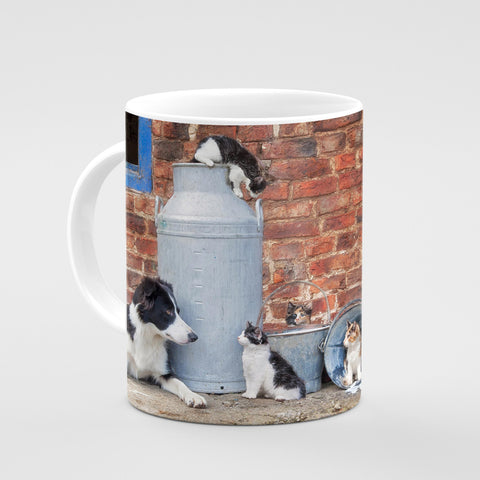 Border Collie & Farm Cats Mug - The cats that got the cream - Kitchy & Co