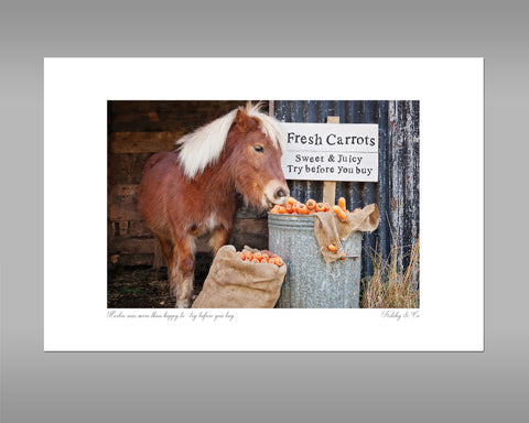 Shetland Pony Print - Try before you buy - Kitchy & Co