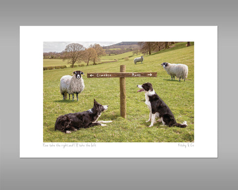Sheepdog Print - Ewe take the Left - Kitchy & Co