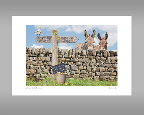 Donkey Print - Dandy and Buttercup - Kitchy & Co