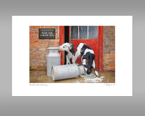 Dairy Calves Print - Double Trouble at the Dairy - Kitchy & Co
