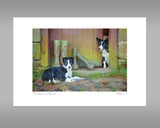 Border Collie Print - No Muddy Feet - Kitchy & Co