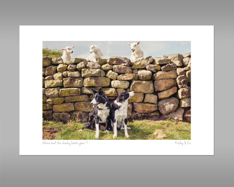 Pet Lambs and Sheepdog Print - Cheeky Pet Lambs - Kitchy & Co