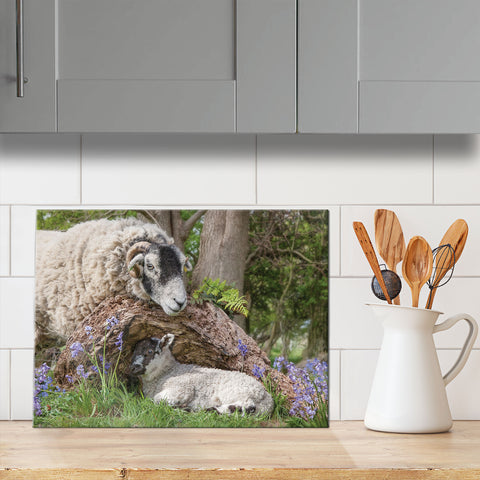 Swaledale Sheep glass chopping board - I've been looking for Ewe - Kitchy & Co