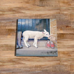 Sheep Glass drinks Coaster - 2 extra pints please - Kitchy & Co