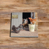Pig and hens Glass drinks Coaster - Bertie shares his lunch - Kitchy & Co