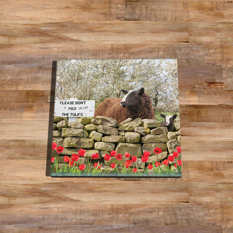 Zwartble sheep Glass drinks Coaster - Will Ewe resist - Kitchy & Co