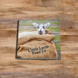 Little lamb Glass drinks Coaster - Happy Stowaway - Kitchy & Co
