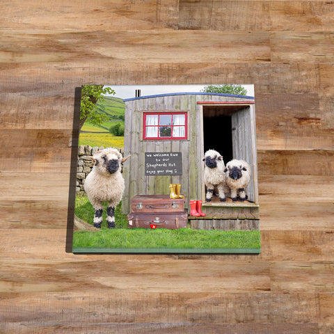 Valais blacknose sheep and shepherds hut Glass drinks Coaster - We welcome Ewe - Kitchy & Co