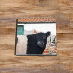 Belted galloway Glass drinks Coaster - And that's how belties are made - Kitchy & Co