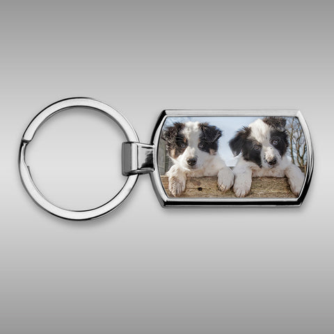 Border collie puppies keyring