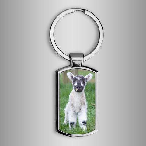 cute lamb keyring