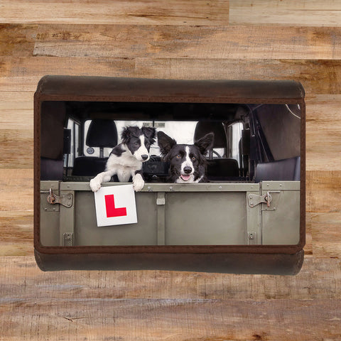 Purse - Learner Driver - Kitchy & Co