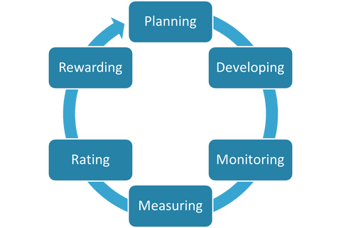 Year-round Performance Appraisal Cycle