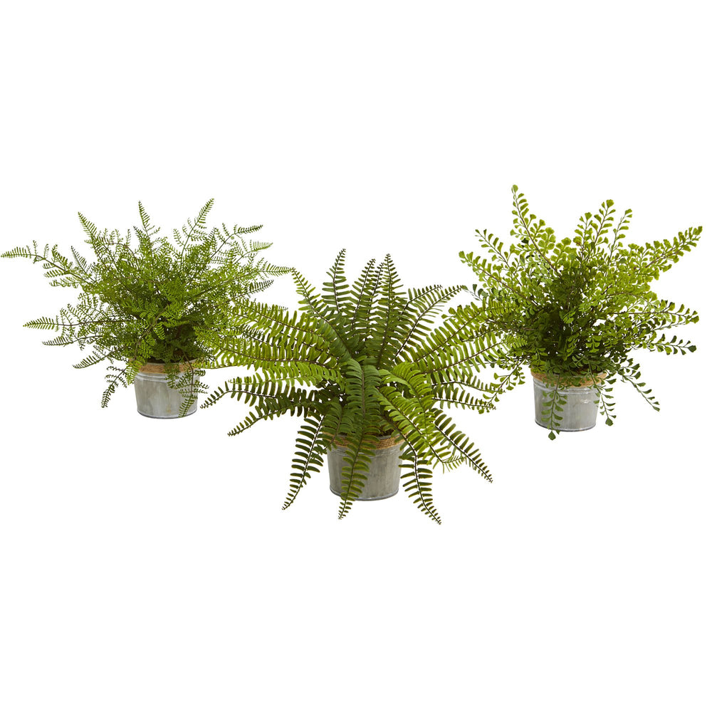 "14"" ASSORTED FERNS WITH PLANTER ARTIFICIAL PLANT, SET OF 3"