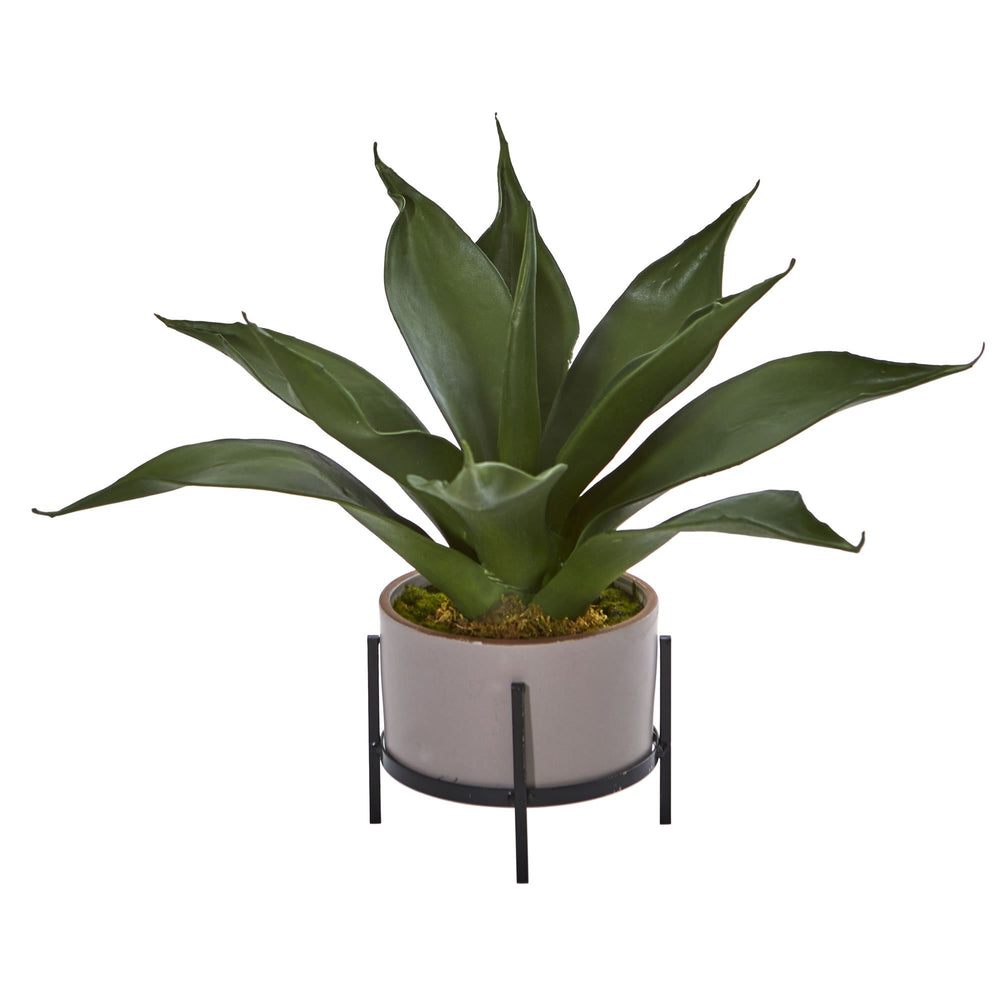 "14"" AGAVE SUCCULENT IN DECORATIVE PLANTER"