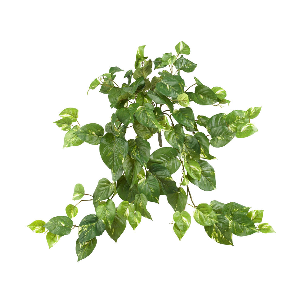 "30"" POTHOS HANGING BUSH, SET OF 3"