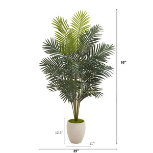 "63"" PARADISE PALM ARTIFICIAL PLANT IN SAND COLORED PLANTER"