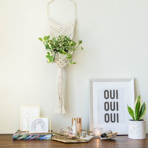 BRASS HEX HANGING MACRAME PLANTER