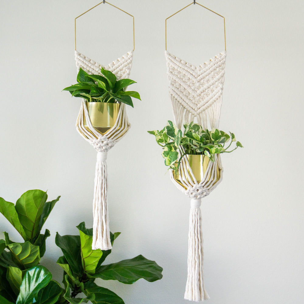 Load image into Gallery viewer, BRASS HEX HANGING MACRAME PLANTER