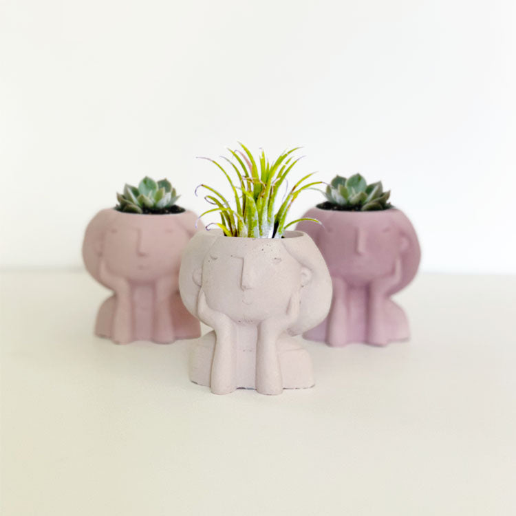 THINK PINK - MIA PLANTER TRIO