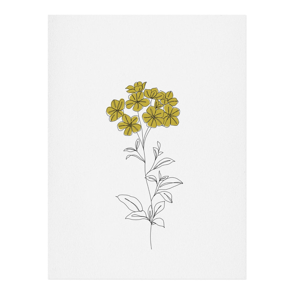 Load image into Gallery viewer, THE COLOUR STUDY BOTANICAL ILLUSTRATION IONA ART PRINT