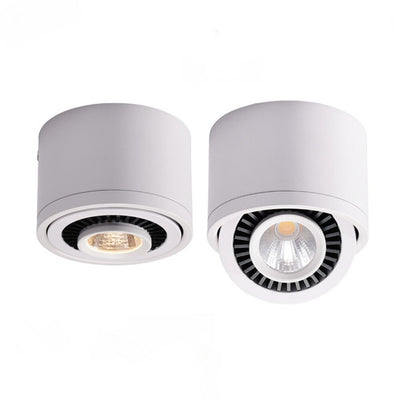 360° Rotatable Angle LED Ceiling Lights Dimmable