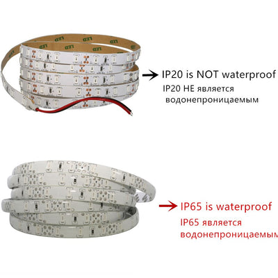1/2/3/4/5M IP65 Waterproof /No LED Strip Light