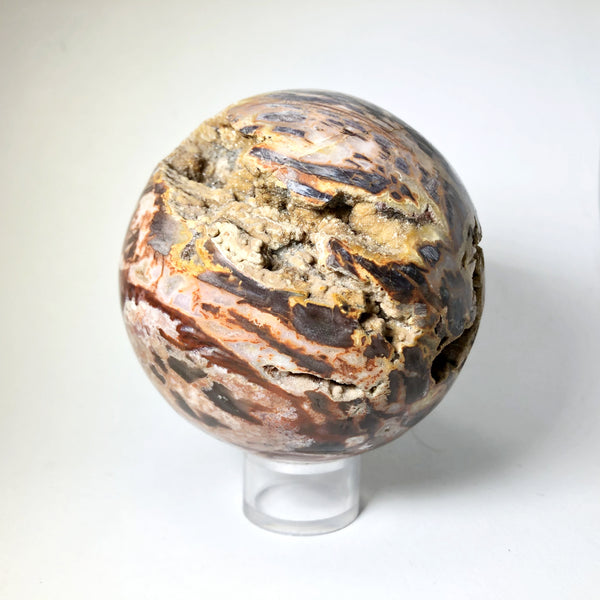 Araucaria Petrified Wood Sphere