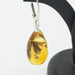 Amber Earrings with Preserved Insect Inclusion
