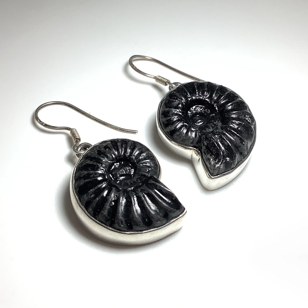Black Goniatite Ammonite Dangle Earrings