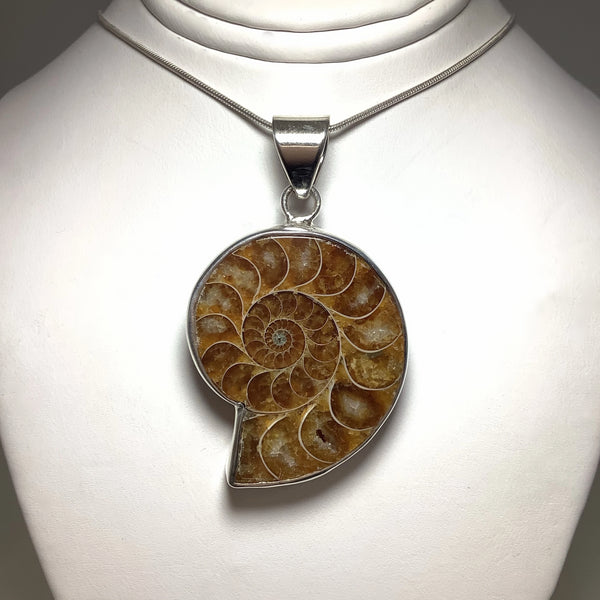 Chambered Ammonite Pendant