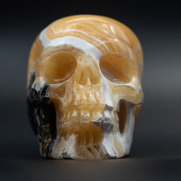 Honey Onyx Calcite Skull