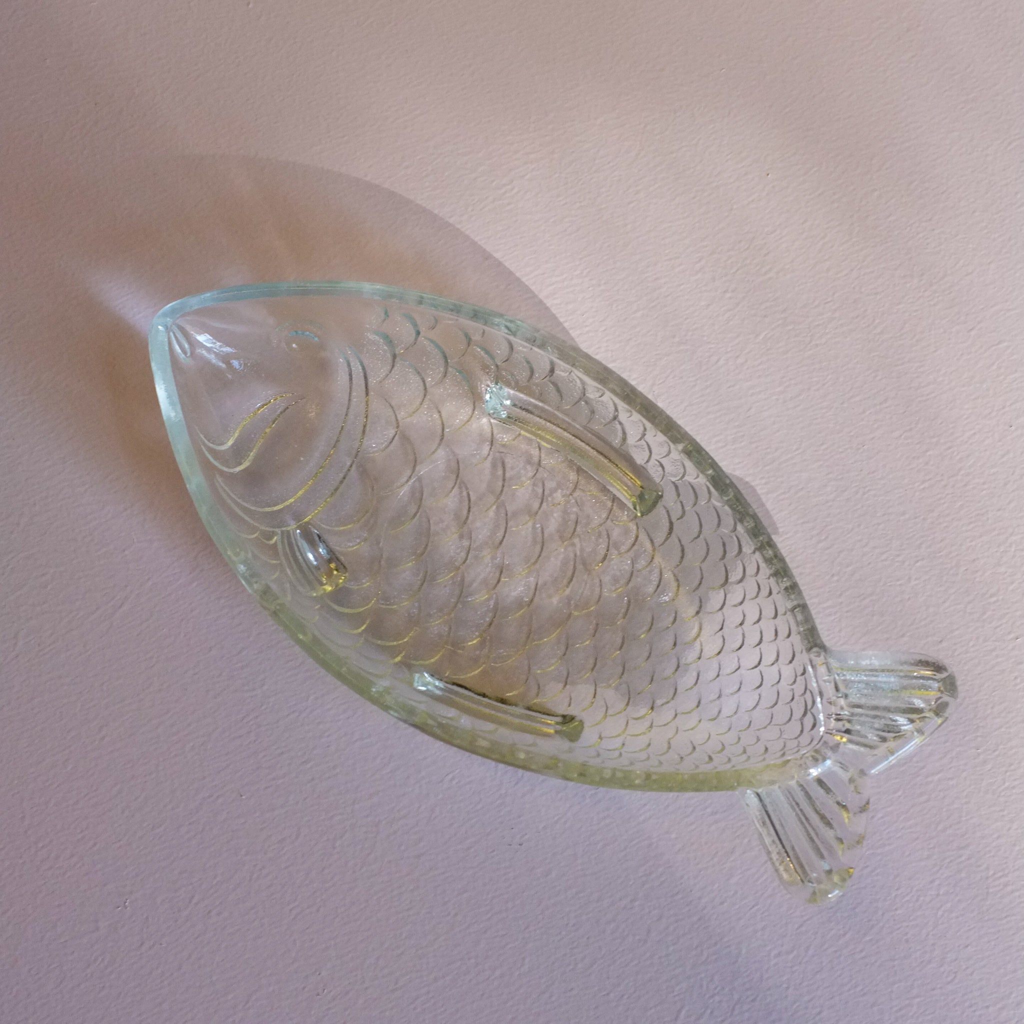 glass fish plate