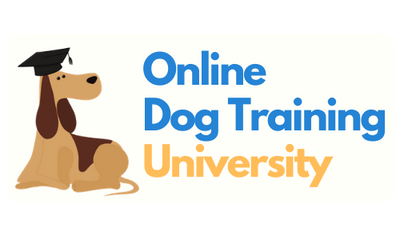 Online Dog Training University