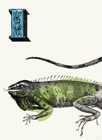 Chapbook Alphabet Prints- I Iguana