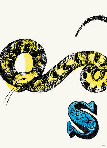 Chapbook Alphabet Prints-  S Snake