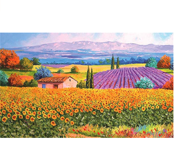 Jigsaw Puzzles 500 Pieces for Adults Great View Puzzles Gift for Family Friends Kids Parents- Rural Scenery Puzzle Game Toy