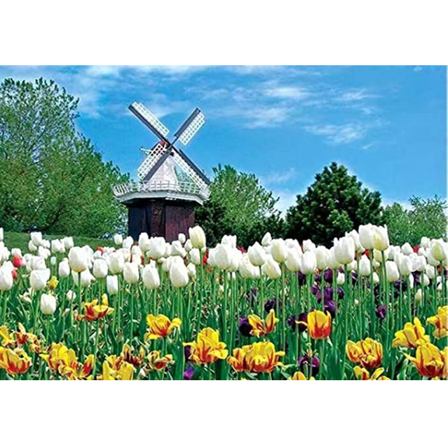 1000 PCS Jigsaw Puzzles for Adults - Dutch Tulip, Educational Intellectual Decompressing Fun Game for Kids Adults