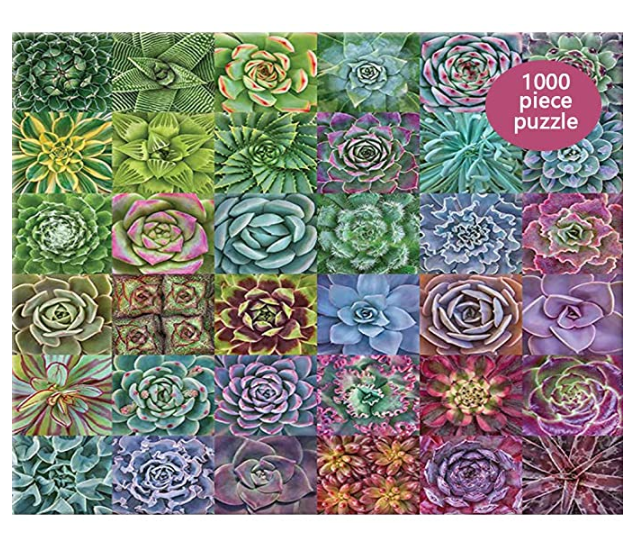 Puzzle Succulent Plants Jigsaws Picture 1000 Pieces Adult Wooden DIY Jigsaw Puzzle Modern Art Home Decor - Great for Family Time - Promotes Problem-Solving (75 x 50 cm)