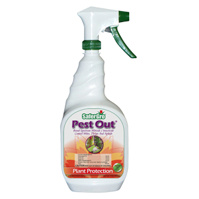 SaferGro Pest Out RTU Quart (6/Cs)