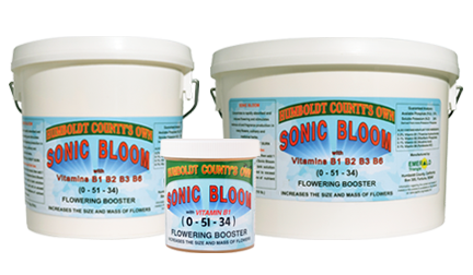 Sonic Bloom 1 lb (12/Cs)