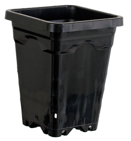 "Active Aqua 5""x5"" Square Black Pot 7"" Tall, 100 per case"