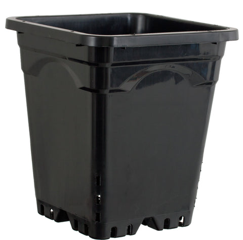 "Active Aqua 9"" x 9"" Square Black Pot, 10"" Tall, case of 24"